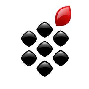 BlackBerry-FR.com