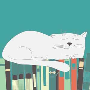 Boring Books for Bedtime Podcast